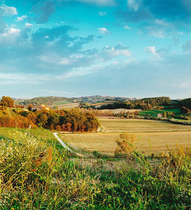 A true 'fattoria'
