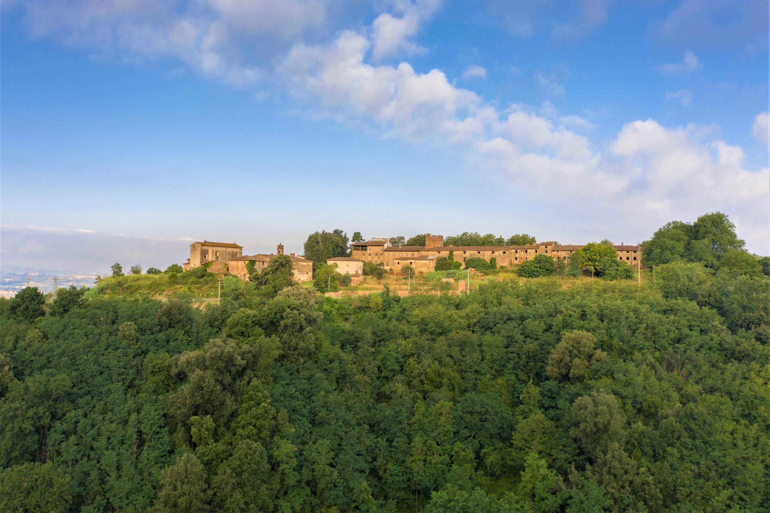 Our estate
