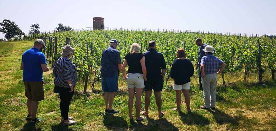 Some of our guests during a wine tour.